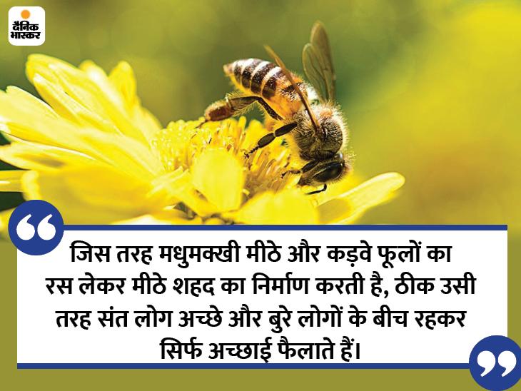 दुनिया अगर एक पेड़ है तो इस पर अमृत जैसे दो फल मिल सकते हैं, एक है मीठी वाणी और दूसरा फल है अच्छे लोगों की संगत|धर्म,Dharm - Dainik Bhaskar