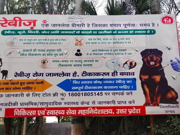 उन्नाव में स्वास्थ्य विभाग द्वारा लगवाई होर्डिंग में डॉगी के नीचे लिखा जिलाधिकारी उन्नाव। - Dainik Bhaskar