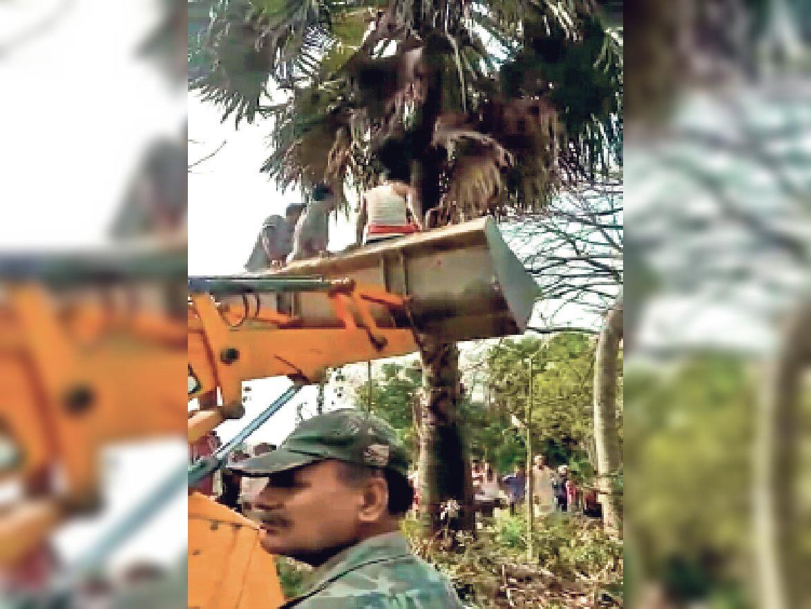 पेड़ पर चढ़े युवक की वहीं हो गई मौत,मुआवजे की मांग को लेकर देवरिया-जाफरपुर मुख्य मार्ग जाम|मुजफ्फरपुर,Muzaffarpur - Dainik Bhaskar