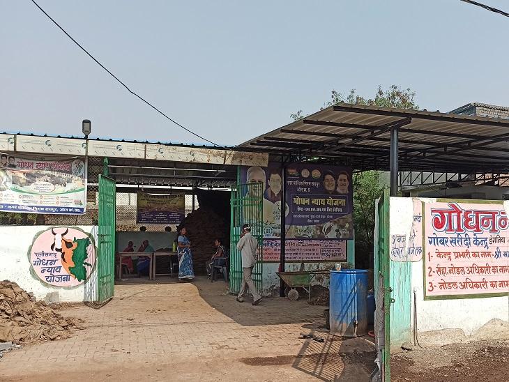 ऐसे खरीदी केंद्रों के जरिये सरकार शहरों में भी गोबर खरीद रही है, लेकिन इसी की वजह से आसपास के लोगों की दिक्कतें भी बढ़ी हैं।