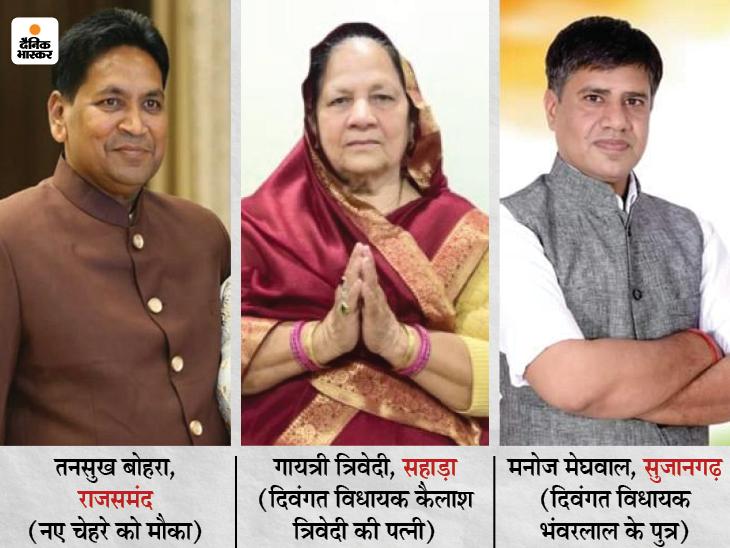 कांग्रेस ने ऐसे चेहरों को उतारा जो पहली बार लड़ रहे चुनाव, सुजानगढ़ से मनोज मेघवाल, सहाड़ा से गायत्री त्रिवेदी और राजसमंद से तनसुख बोहरा मैदान में|जयपुर,Jaipur - Dainik Bhaskar