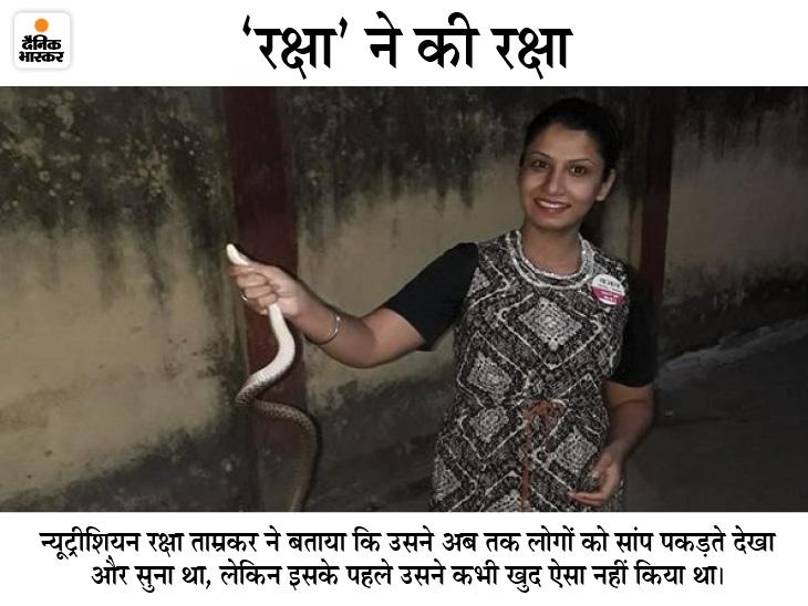 गौरेला-पेंड्रा-मरवाही में मेडिकल स्टोर संचालक के घर में घुसा सांप, दवाई लेने पहुंची लड़की ने 15 मिनट में पकड़ लिया छत्तीसगढ़,Chhattisgarh - Dainik Bhaskar