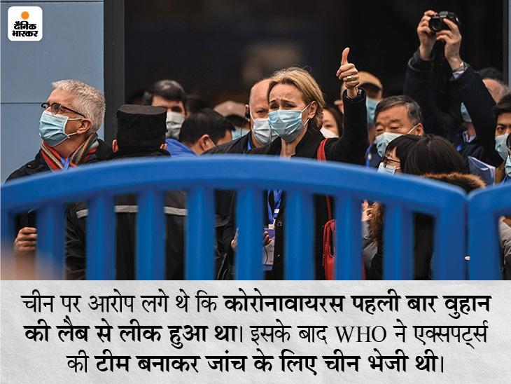 वायरस किसी जानवर के जरिए चमगादड़ से इंसानों में पहुंचा होगा, वुहान की लैब से लीक नहीं हुआ विदेश,International - Dainik Bhaskar