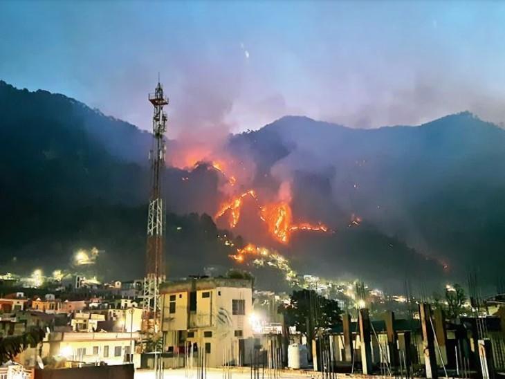शहर पहुंची जंगल की आग, 1200 हेक्टेयर से ज्यादा क्षेत्र जलकर खाक; नैनीताल के 20 जंगल भी चपेट में देश,National - Dainik Bhaskar