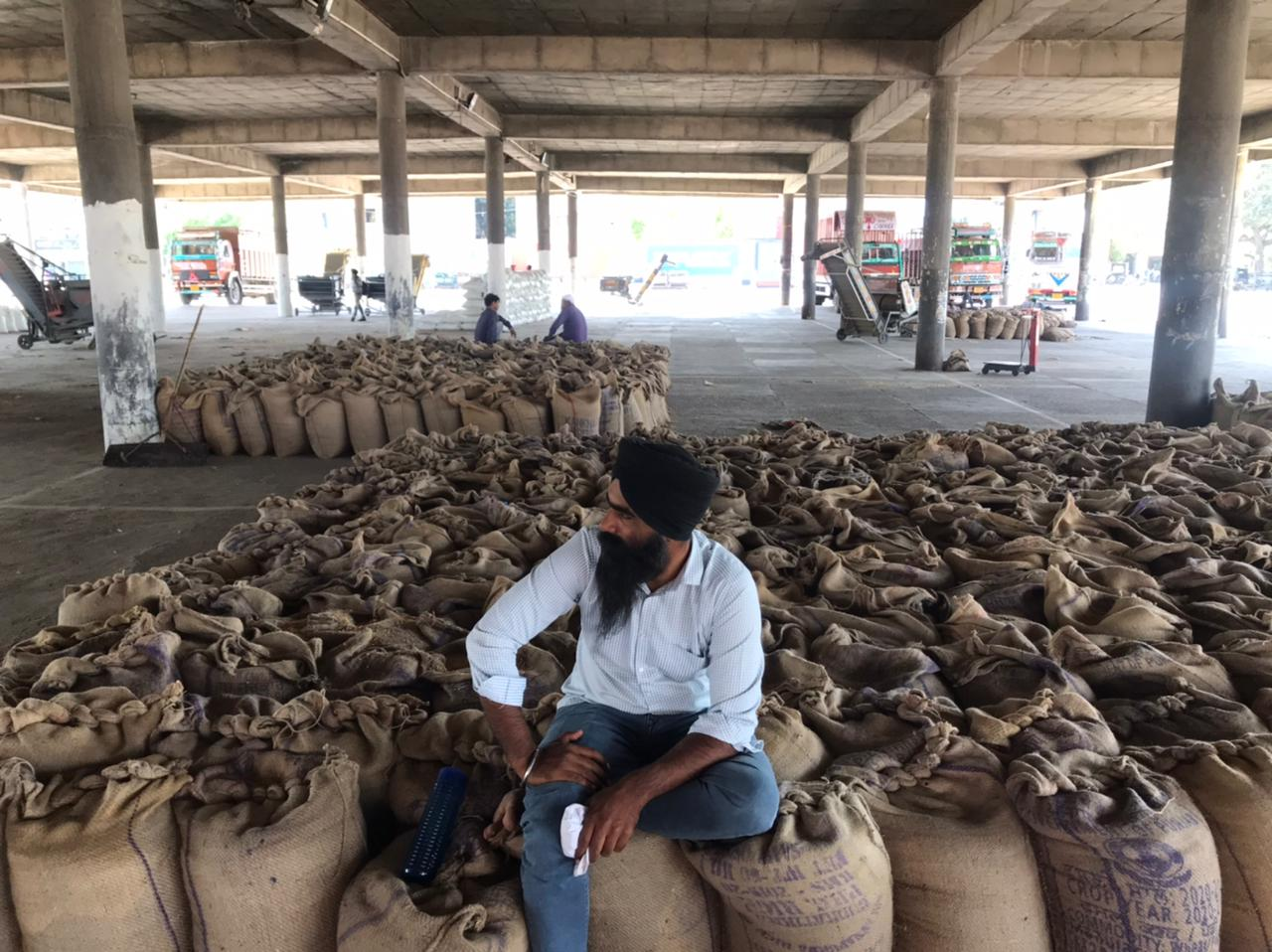 जालंधर मंडी में पहुंचा गेहूं लेकिन आढ़ती हड़ताल पर गए, खरीद न होने से मंडियों में ही गुजरेंगी किसानों की रातें|जालंधर,Jalandhar - Dainik Bhaskar