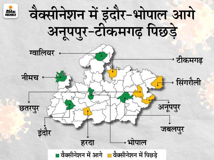 इंदौर के बाद भोपाल में भी 50 हजार से अधिक लोगों का वैक्सीनेशन; टीकमगढ़, अनूपपुर, सिंगरौली, उमरिया नहीं बढ़ा पा रहे वैक्सीनेशन|मध्य प्रदेश,Madhya Pradesh - Dainik Bhaskar