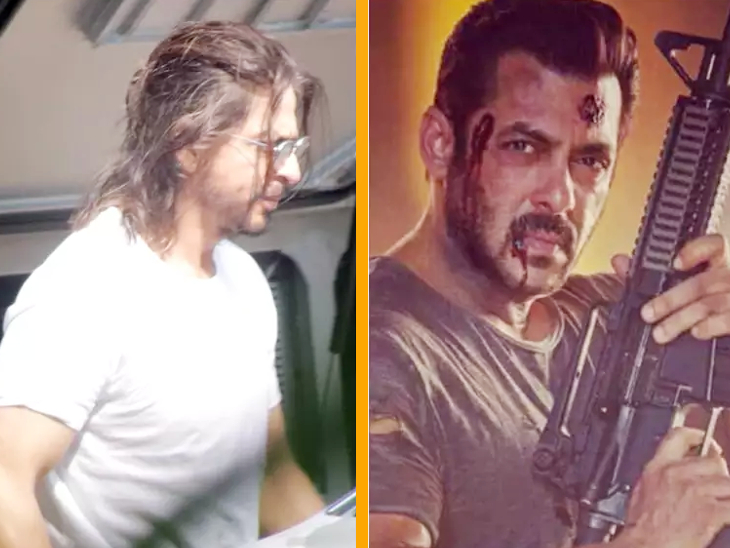 शाहरुख की 'पठान', सलमान की 'टाइगर 3' को नहीं होगा नुकसान, अक्षय की 'रक्षाबंधन' की शूटिंग शुरू होने से पहले ही रुकी|बॉलीवुड,Bollywood - Dainik Bhaskar
