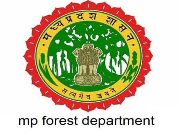 प्रभारी मंत्री के बिना जानकारी नियम विरुद्ध 116 तबादले; 2 CCF और 3 DFO को नोटिस, 15 दिन में मांगा जबाव मध्य प्रदेश,Madhya Pradesh - Dainik Bhaskar