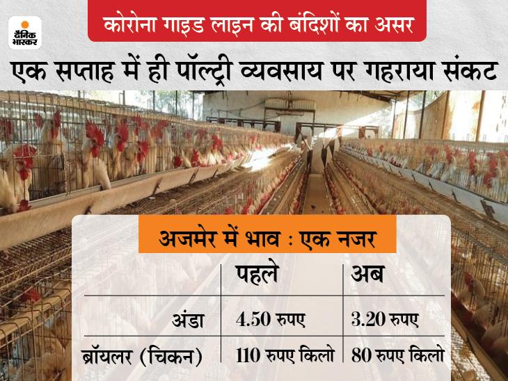कोरोना गाइड लाइन का असर; दुकान समय में कटौती से घटी मांग व बिक्री, अंडे व चिकन के भाव हुए कम, रोजाना 1 करोड़ का नुकसान अजमेर,Ajmer - Dainik Bhaskar