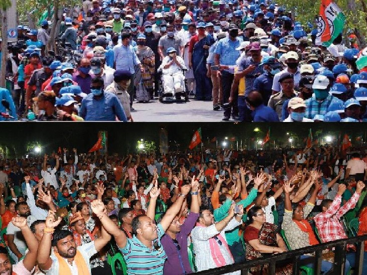 न जीत का जश्न मनेगा, न जुलूस निकलेगा; सर्टिफिकेट लेने दो से ज्यादा लोग नहीं जाएंगे साथ|देश,National - Dainik Bhaskar