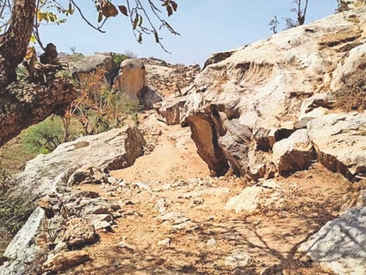 गांव आडीकांकर में पहाड़ी व ऊबड़ खाबड रास्ता जिसे सोहन ने मवेशियों के लिए किया आसान।