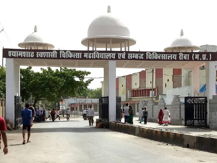 एक कॉल कर पता करें रीवा शहर में सरकारी और प्राइवेट कोविड अस्पतालों में बेड खाली हैं या नहीं|रीवा,Rewa - Dainik Bhaskar