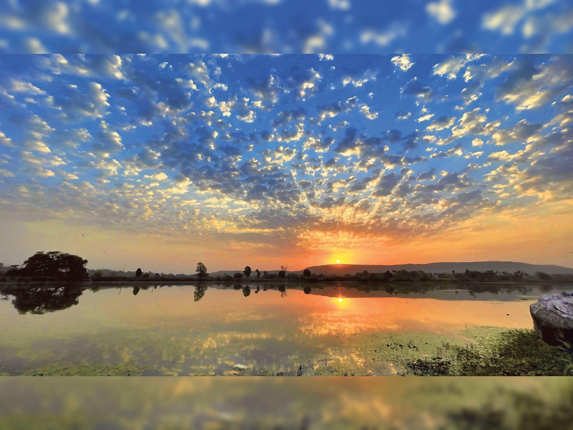 यह तस्वीर डायलाब तालाब क्षेत्र से नेचर फोटोग्राफर भरत कंसारा ने क्लिक की। - Dainik Bhaskar