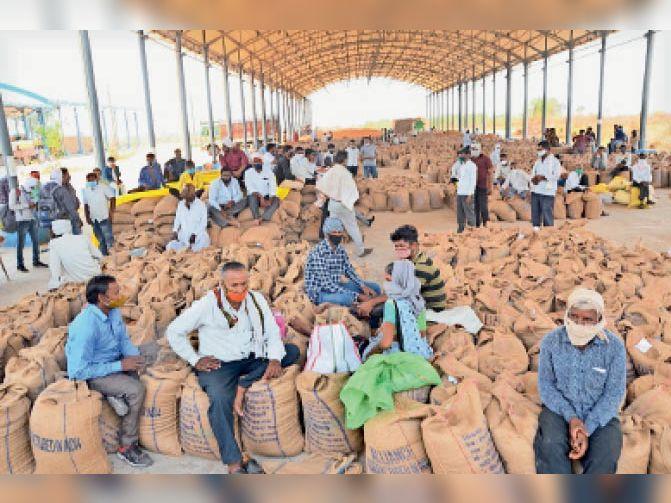 निंबोला सासोयटी में खरीदी शेड़ भरा रहा। किसान यहां बैठकर अपनी बारी आने का इंतजार करते रहे। - Dainik Bhaskar