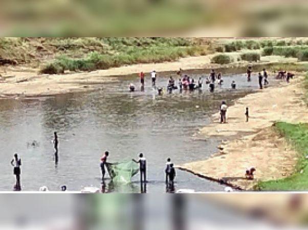 अंधियारखोर. मछली पकड़ने के लिए नदी में पहुंची लोगों की भीड़। - Dainik Bhaskar