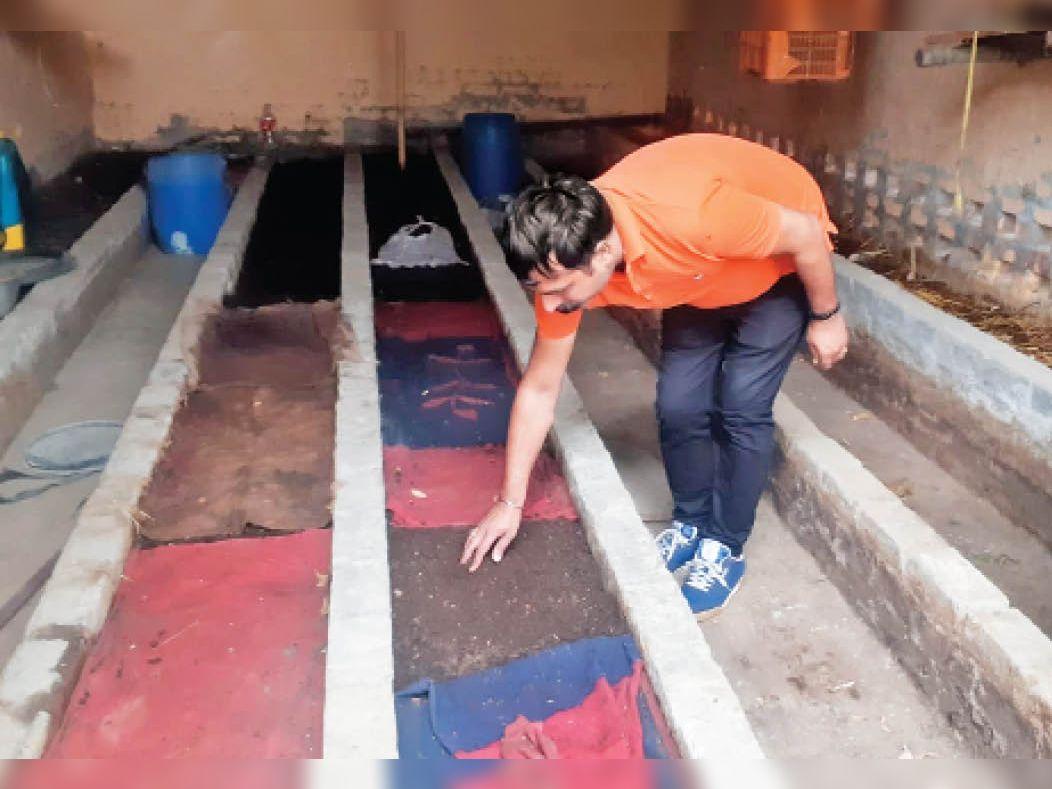गन्नौर   वर्मी कम्पोस्ट खाद दिखाते कॄषि अधिकारी संदीप बजाज। (इनसेट में) खाद तैयार होने के बाद। - Dainik Bhaskar