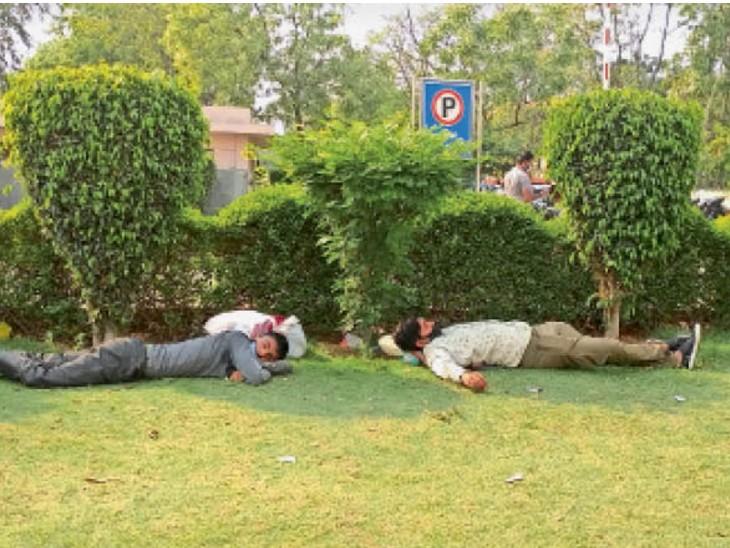 पीजीआई में धूप से बचने के लिए पेड़ के नीचे आराम करते हुए। - Dainik Bhaskar