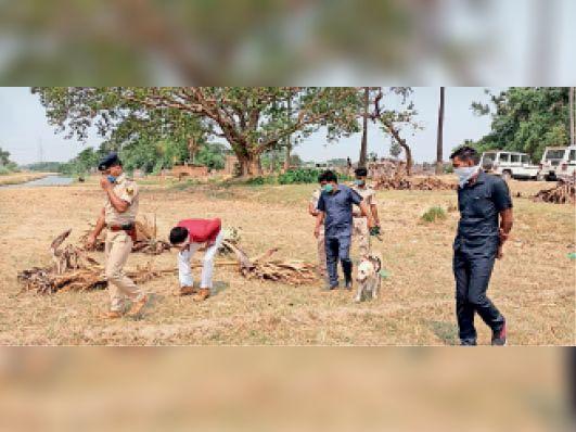 कुचायकोट में हत्या की जांच करती डॉग स्क्वायड की टीम। - Dainik Bhaskar