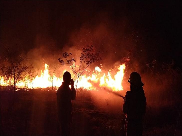 दुर्ग जिले के ग्राम हिंगनाडीह की सरकारी नर्सरी में लगी आग, देर रात भीषण आग की लपटों से भारी नुकसान, फायर बिग्रेड ने आग पर पाया काबू|भिलाई,Bhilai - Dainik Bhaskar