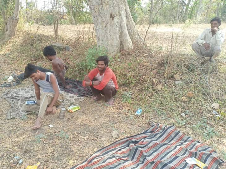 राजस्थान से लौटे 5 युवा 14 दिन के लिए गांव के बाहर खेत में ही रुके हैं, धूप बढ़ने पर पेड़ के नीचे सोते हैं; घरवाले दूर ही खाना रख जाते हैं सागर,Sagar - Dainik Bhaskar