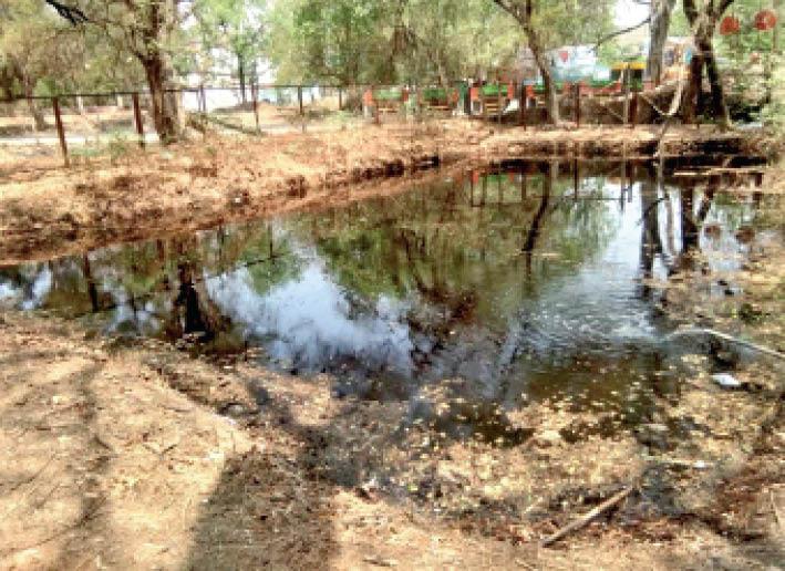 महू. नर्मदा के व्यर्थ बहते पानी से कैंटबाेर्ड ने मिनी झील तैयार की। - Dainik Bhaskar