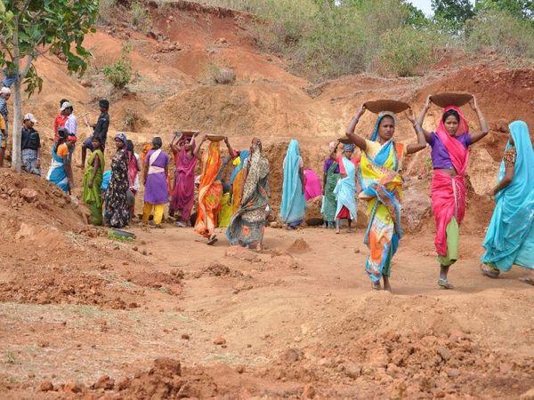 कोरोना ने मनरेगा योजना की रफ्तार भी रोकी, 483 में से 120 गांवों में चल रही है योजना बिलासपुर,Bilaspur - Dainik Bhaskar