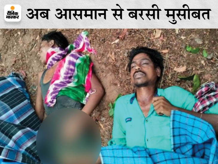 खेत में काम करने गए थे दोनों, मौसम बदला तो बारिश से बचने के लिए पेड़ के नीचे खड़े हो गए थे|छत्तीसगढ़,Chhattisgarh - Dainik Bhaskar