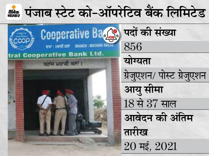 पंजाब स्टेट को-ऑपरेटिव बैंक ने 856 पदों पर निकाली भर्ती, 20 मई तक जारी रहेगी एप्लीकेशन प्रोसेस|करिअर,Career - Dainik Bhaskar