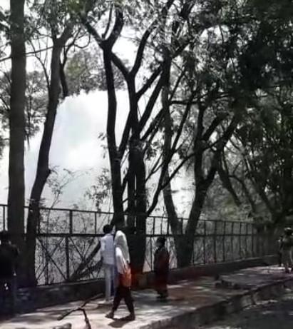 एकांत पार्क में कोलार लाइन से उठा 50 फीट ऊंचा फव्वारा, 2 से 3 दिन रह सकती है समस्या, निगम का दावा- आज रात तक ही ठीक कर लेंगे|भोपाल,Bhopal - Dainik Bhaskar