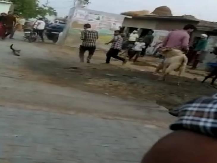 चुनावी रंजिश में प्रधान और पूर्व प्रधान समर्थकों में जमकर पथराव, लाठी-डंडे भी जमकर चले|उत्तरप्रदेश,Uttar Pradesh - Dainik Bhaskar