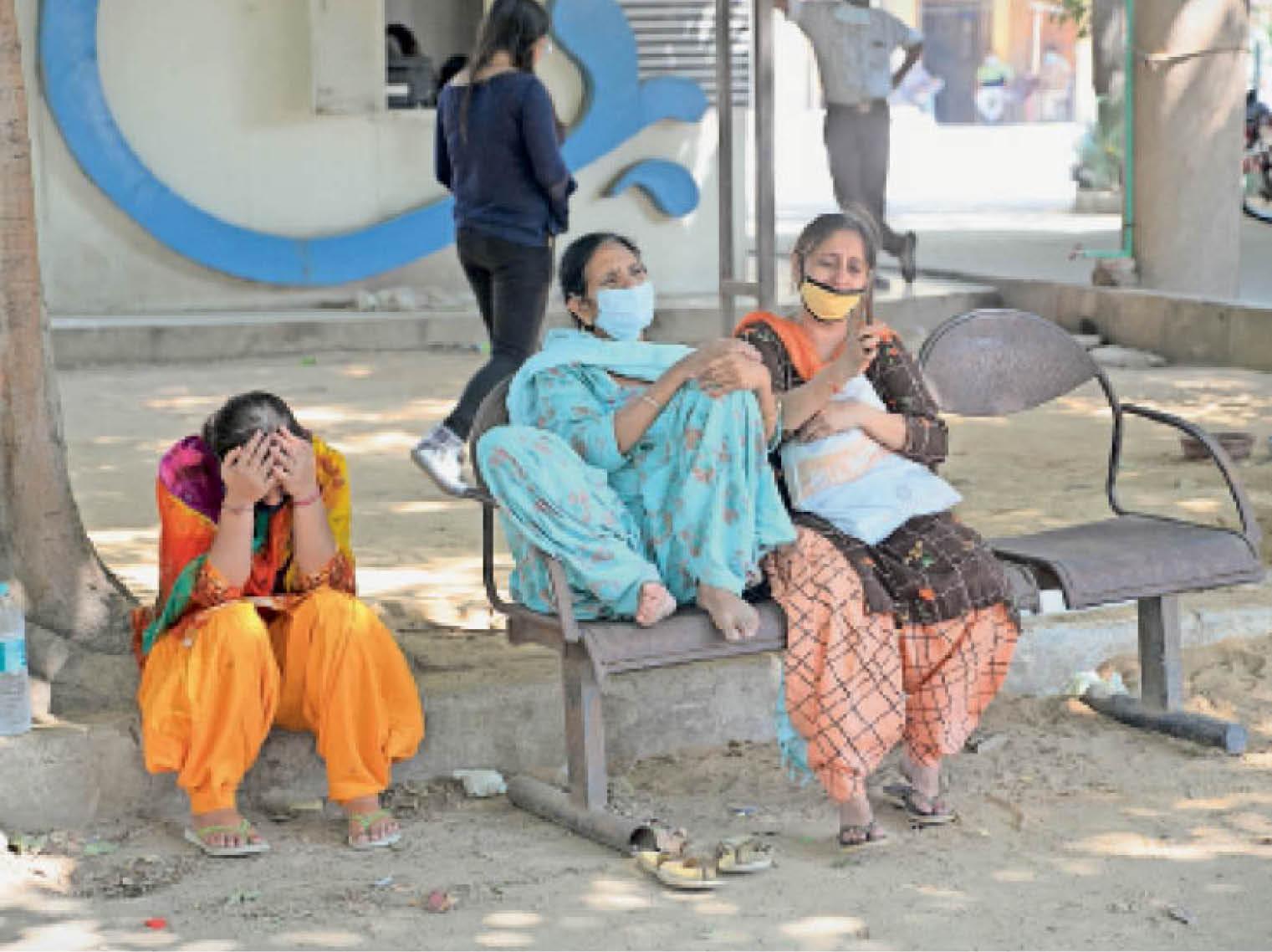 10 साल तक के 22 बच्चे और 20 से 40 साल के 294 लोग पाॅजिटिव; ज्यादातर युवाओं को चेस्ट इंफेक्शन और खांसी बीमार कर रही जालंधर,Jalandhar - Dainik Bhaskar