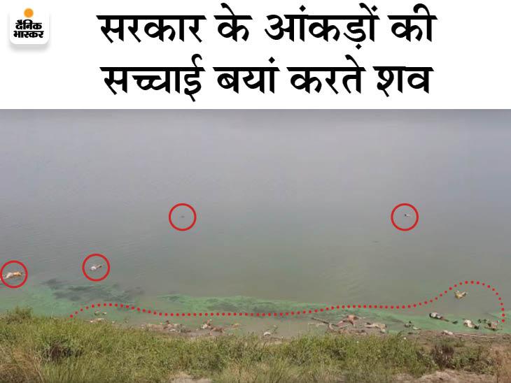बिहार-यूपी बॉर्डर के बक्सर में गंगा किनारे पानी में दिखे 40 शव, प्रशासन का दावा- ये लाशें यूपी से बहकर आईं|बिहार,Bihar - Dainik Bhaskar