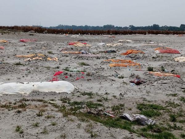 अब रायबरेली और प्रयागराज में गंगा किनारे मिलीं सैकड़ों लाशें; परिजन बोले- अंतिम संस्कार के पैसे नहीं थे|उत्तरप्रदेश,Uttar Pradesh - Dainik Bhaskar