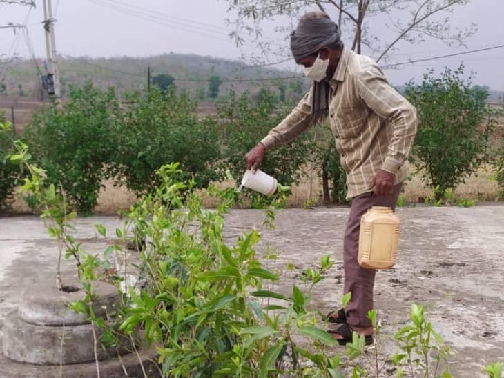 पंचायत में रखे पौधों को दिया जा रहा पानी।