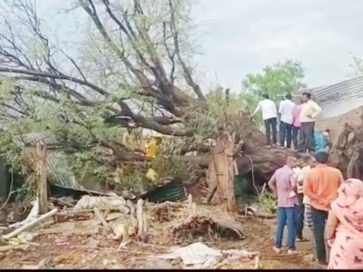 जलगांव में एक पेड़ के झोपड़ी पर गिरने से दो नाबालिग बहनों की मौत हो गई।
