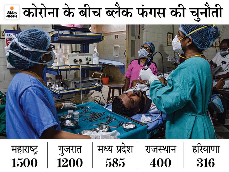 देशभर में 5500 मामले, महाराष्ट्र में सबसे ज्यादा 1500 केस; राजस्थान में प्राइवेट अस्पतालों में भी फ्री इलाज होगा|देश,National - Dainik Bhaskar