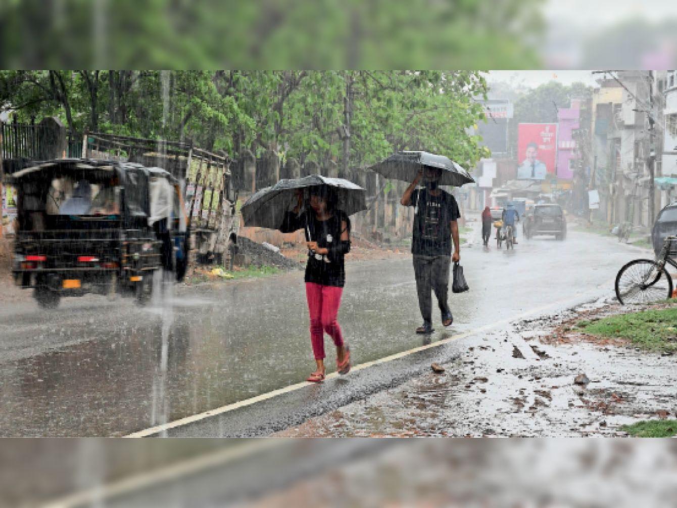मई में एक दिन में सबसे अधिक बारिश का 12 साल का टूटा रिकार्ड, तेज हवा से 40 फीडराें की बिजली हुई गुल भागलपुर,Bhagalpur - Dainik Bhaskar