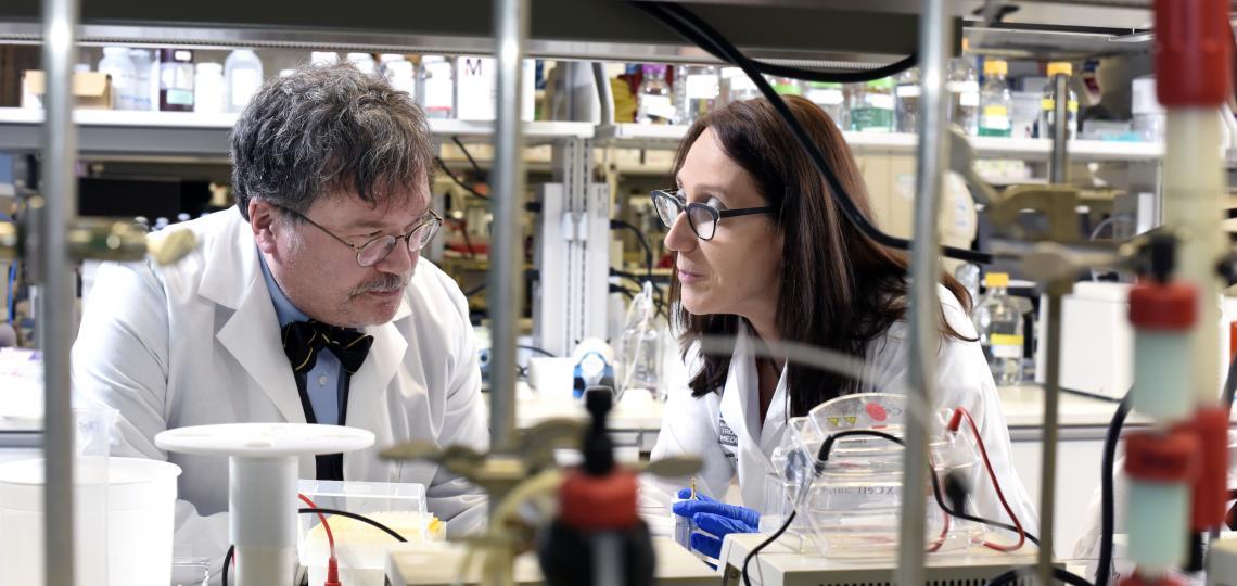 नेशनल स्कूल ऑफ ट्रॉपिकल मेडिसिन, बेलर में प्रोफेसर और डीन डॉ. पीटर होटेज और एसोसिएट प्रोफेसर डॉ. मारिया एलेना बोताजी की निगरानी में बनी वैक्सीन का प्रोडक्शन भारत में बायोलॉजिकल ई करेगी।