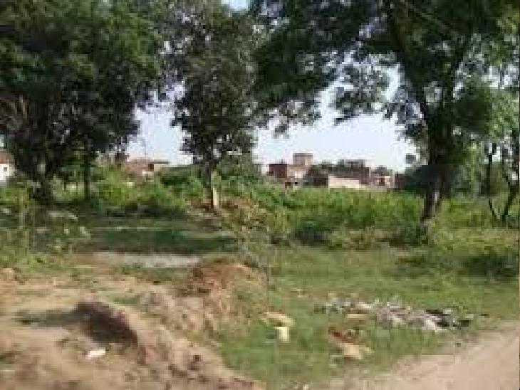 MC के पास गांव कैंबवाला में जमीन है। वहां की जमीन MC फॉरेस्ट डिपार्टमेंट को ट्रांसफर करवा देगी। - Dainik Bhaskar