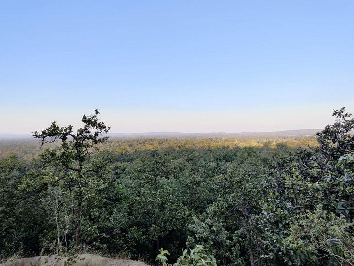 यह कोयला परियोजना हसदेव और मांड नदियों के कछार वाली इस वन भूमि में प्रस्तावित है। इसी क्षेत्र में लेमरु हाथी रिजर्व भी बनना है जिस पर अब सरकार बात नहीं कर रही है। - Dainik Bhaskar