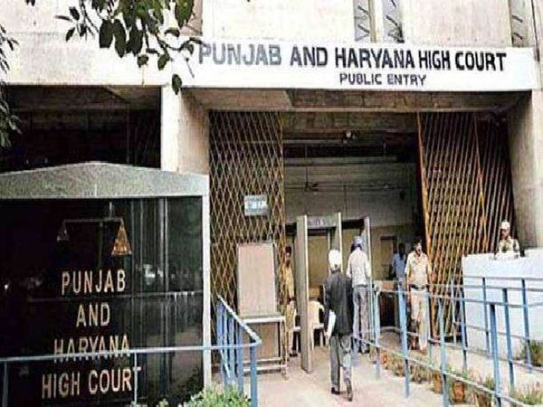 हाईकोर्ट ने कहा दाखिले के लिए स्कूल लीविंग सर्टिफिकेट जरूरी|पंजाब,Punjab - Dainik Bhaskar