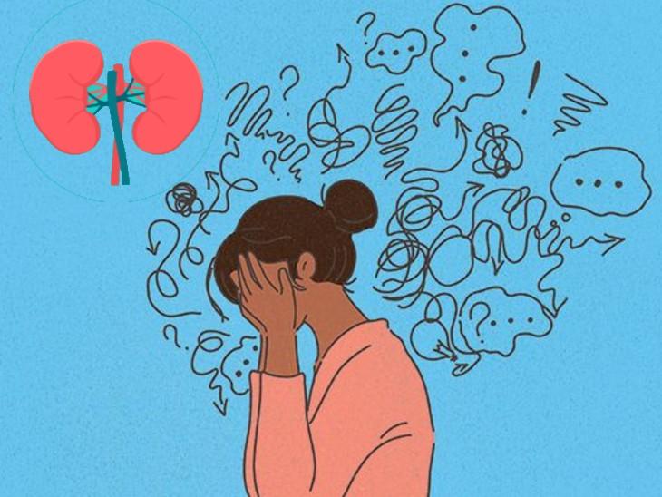 डिप्रेशन से जूझ रहे हैं तो आपकी किडनी के काम करने की क्षमता घट सकती है, युवाओं पर हुई रिसर्च में हुआ खुलासा|लाइफ & साइंस,Happy Life - Dainik Bhaskar