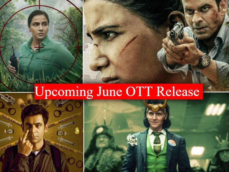 'द फैमिली मैन 2' से लेकर 'शेरनी' तक, जून में ओटीटी प्लेटफॉर्म पर रिलीज होने जा रही हैं ये सीरीज और फिल्में|बॉलीवुड,Bollywood - Dainik Bhaskar