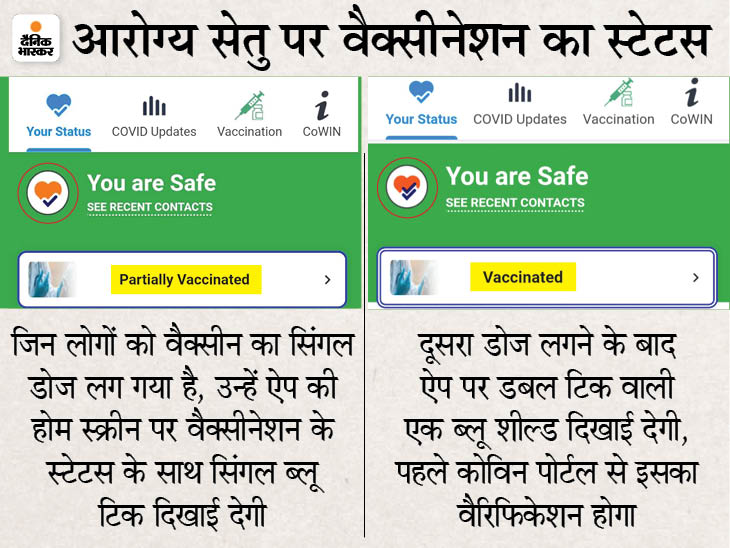 आरोग्य सेतु पर वैक्सीनेशन का स्टेटस अपडेट कर सकेंगे, इससे सफर के दौरान जांच में आसानी होगी देश,National - Dainik Bhaskar