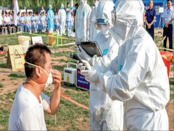 चीन में मिले एच10एन3 बर्ड फ्लू के इंसानों में फैलने का जोखिम कम|विदेश,International - Dainik Bhaskar