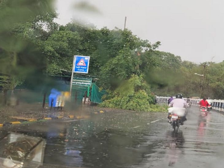 शहर भर में आंधी के कारण 20 से ज्यादा पेड़ धराशायी हो गए।