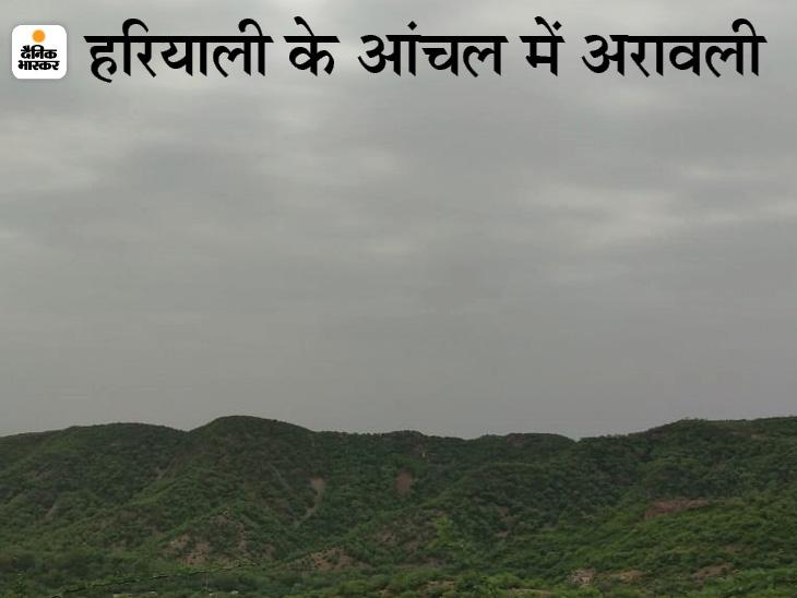 जयपुर में मौसम सुहाना, जैसलमेर-बीकानेर सहित कई जिलों में तेज आंधी के साथ बारिश की चेतावनी|जयपुर,Jaipur - Dainik Bhaskar