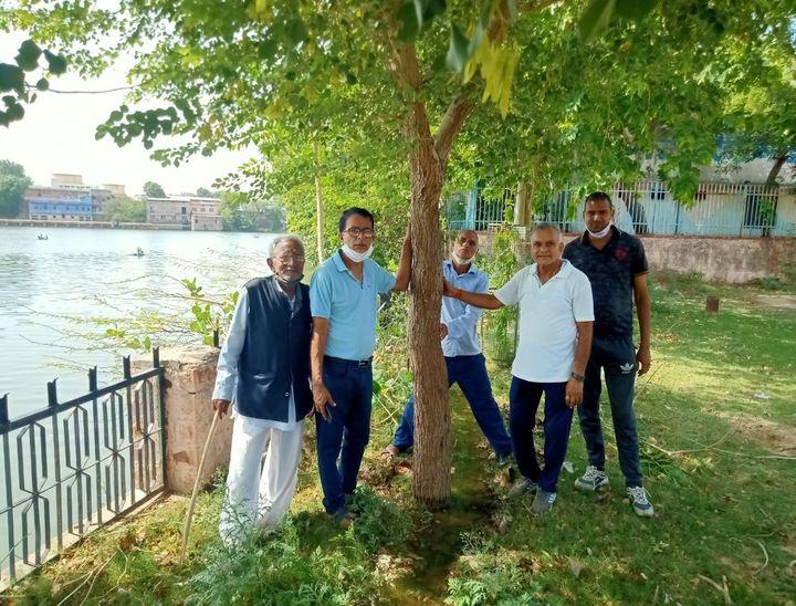 देखिए, यह वह पौधें जिन्हें हमने पेड़ बनाया। - Dainik Bhaskar