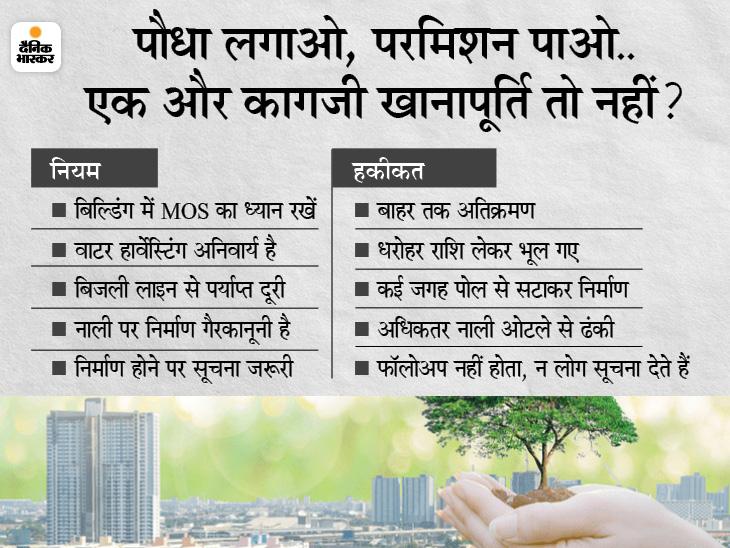 बिल्डिंग परमिशन के लिए पौधे लगाना जरूरी, चाहे कहीं भी लगाएं; PM आवास पर भी लागू होगा आदेश|मध्य प्रदेश,Madhya Pradesh - Dainik Bhaskar