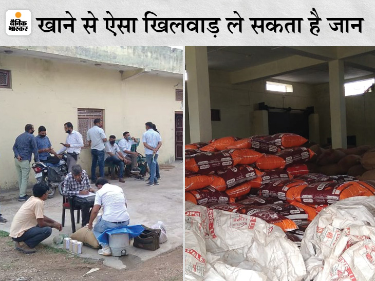 पॉलिश के बाद कीमत दोगुनी, 340 क्विंटल माल जब्त, व्यापारी बोला- MP में सख्ती के बाद राजस्थान को बनाया ठिकाना|चित्तौड़गढ़,Chittorgarh - Dainik Bhaskar